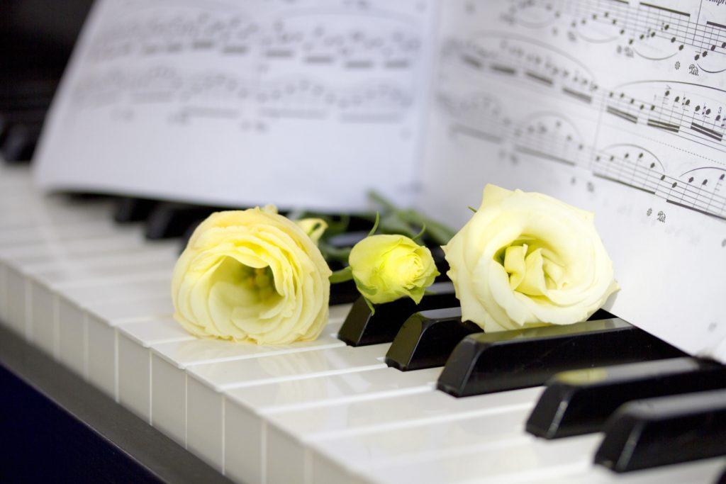 全国各地のピアノ教室・ピアノ講師を探す【ピノたん】